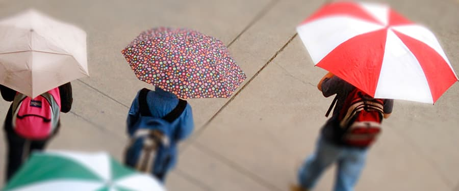 Students walking in the rain