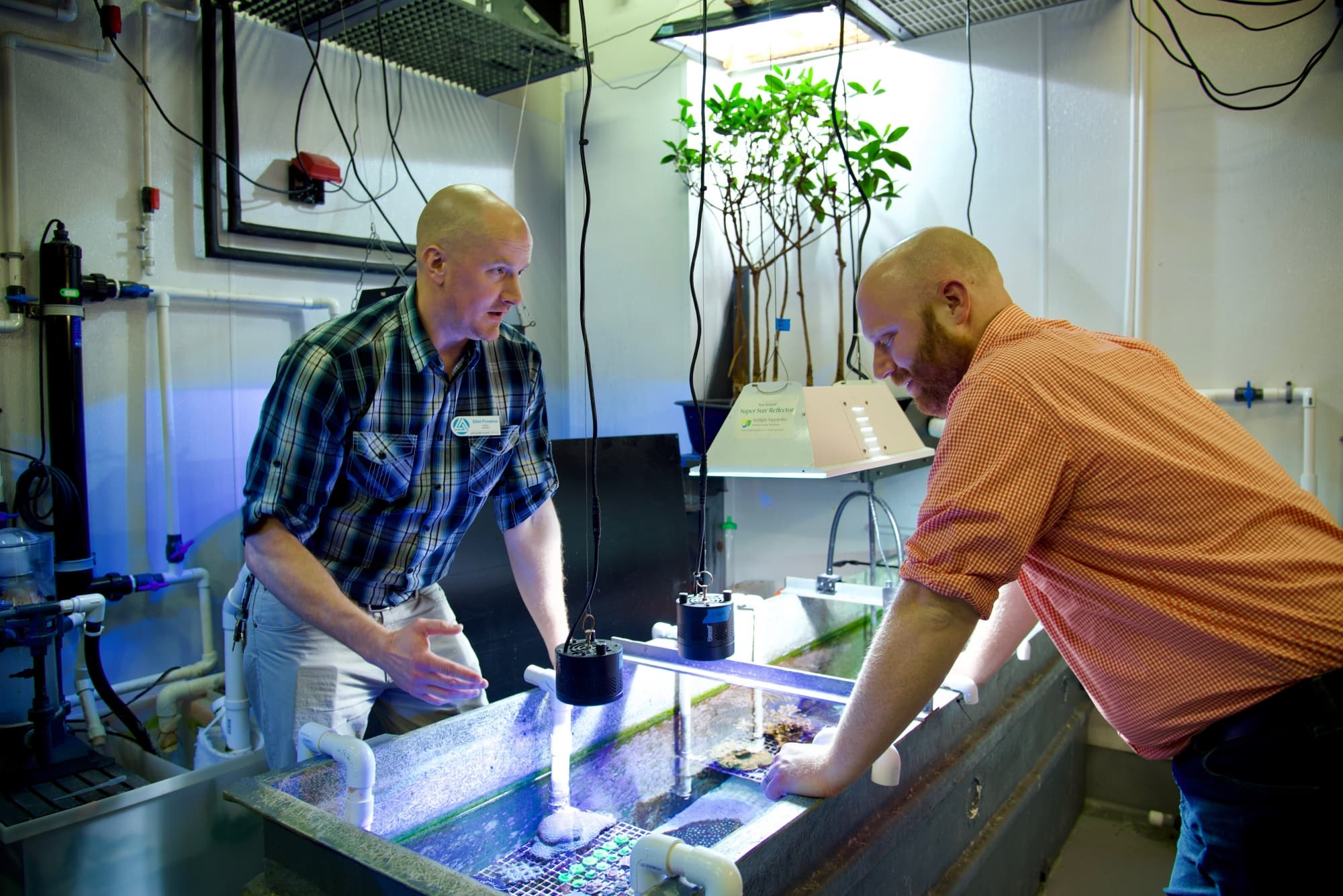 Discovery Place's Elliot Provance, left and Jason Macrander, a postdoctoral fellow in the Reitzel Lab, are collaborating on a marine research project.