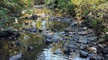 City of Creeks